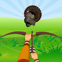 Free online flash games - Turkey Hidden Target game - WowEscape