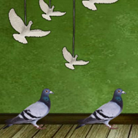 Free online html5 games - 8b Pigeon Escape 2  game