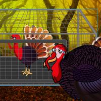 Free online flash games - Big Thanksgiving Land Escape game - WowEscape