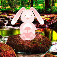 Free online html5 games - Search Out little Easter Bunny game