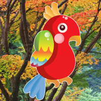 Free online html5 games - Hiddenogames Hidden Birds game