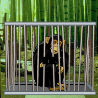 Free online flash games - Bamboo Forest Monkey Escape game - WowEscape