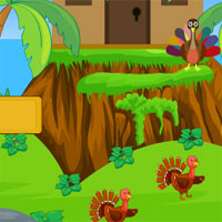 Free online flash games - AVM Turkey Forest Escape 2018