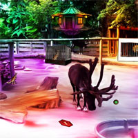 Free online flash games - Top10 NewGames Find The Ring From Zoo game - WowEscape
