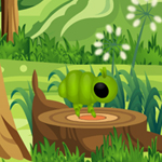 Free online flash games - Hidden Insects New game - WowEscape