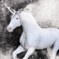 Free online flash games - White Unicorn-Hidden Stars game - WowEscape