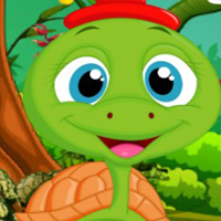 Free online flash games - Palani Comely Turtle Escape Game game - WowEscape