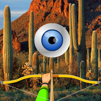 Free online flash games - Cactus Forest-Hidden Targets game - WowEscape