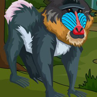 Free online flash games - G4E Ancient Mandrill Escape