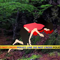 Free online flash games - Escape Game Save The Girl from Crime Scene game - WowEscape