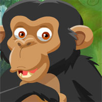 Free online flash games - Chimpanzees Escape game - WowEscape