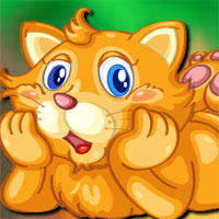 Free online flash games - Avm Playful Cat Escape