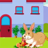 Free online flash games - Avm Escape The Rabbit game - WowEscape