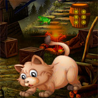 Free online flash games - Avm Escape Angry Cat game - WowEscape