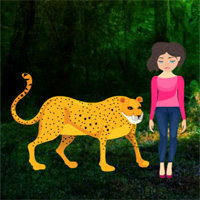Free online flash games - Rescue Girl From Wild Animal