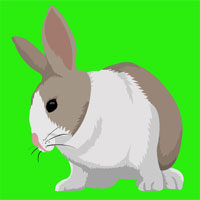 Free online flash games - Chick Easter Escape game - WowEscape