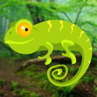 Free online flash games - HiddenoGames Hidden Chameleons game - WowEscape