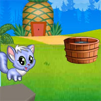 Free online flash games - Naughty Cat Adventure game - WowEscape