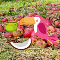 Free online flash games - Wowescape Escape Game Apple Forest game - WowEscape